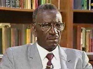 cheikh anta diop black radical